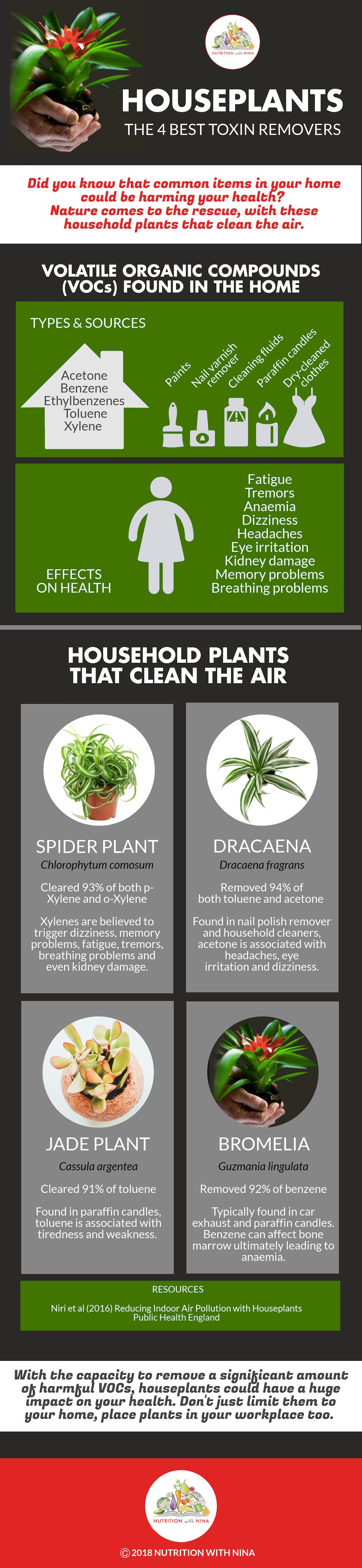 4 plants to remove common household toxins_Infographic by Nutrition with Nina
